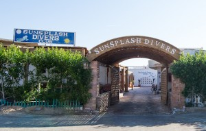 Sunsplash Divers Home